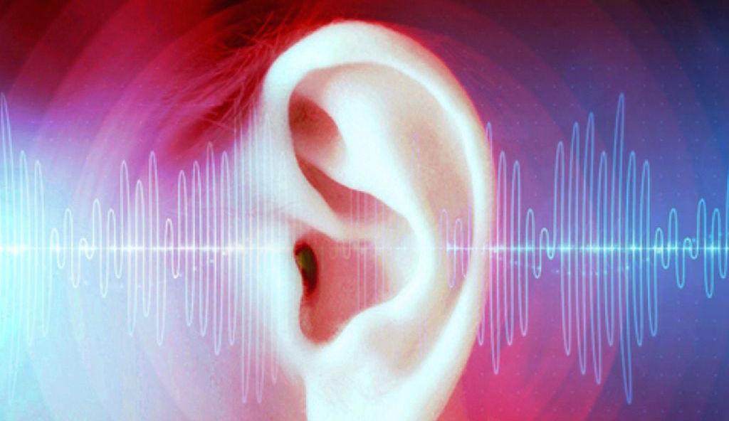 Natural Treatment for Tinnitus   Metro Hearing and Tinnitus Treatment Centre